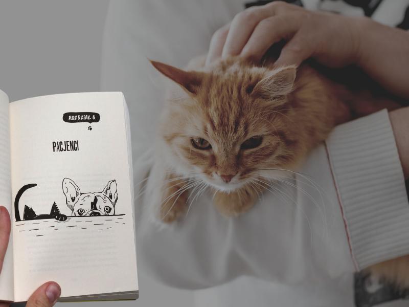 recenzja książki nie dla psa i kota kiełbasa